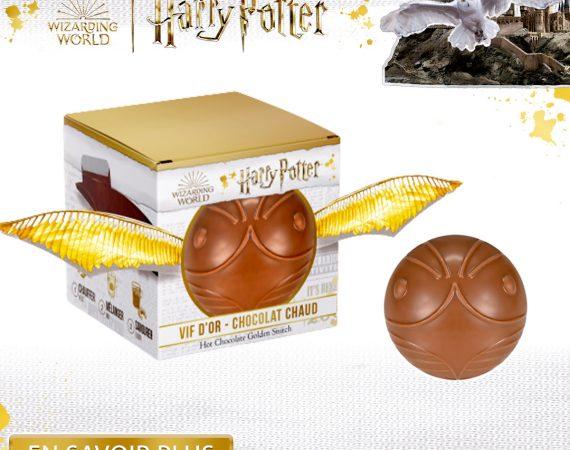 Harry Potter Brest Quimper